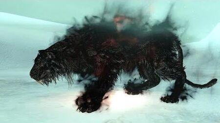 Битва с Лудом и Залленом, Питомцами Короля - Dark Souls II