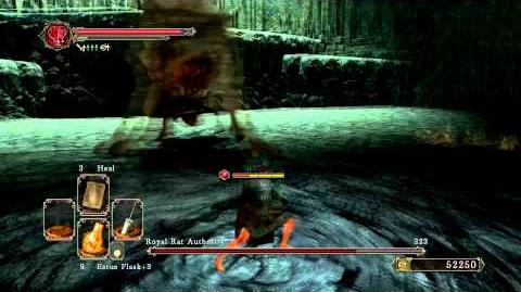 Dark Souls 2 - Royal Rat Authority (Melee)