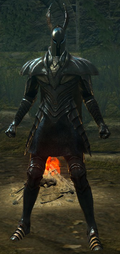 Сет Серебряного Рыцаря