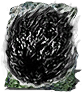 Dark Orb