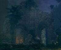 Darkrootgarden