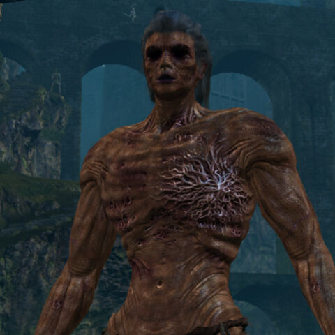 A male Hollowed Chosen Undead