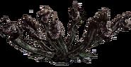 Hydra Render