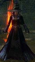 Сет ведьмы