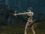 Darkmoon Bow