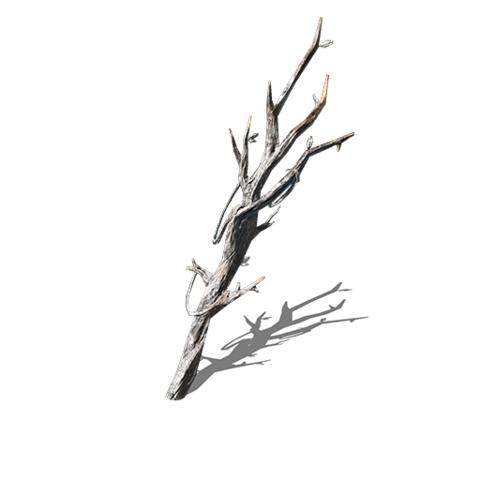 File:Witchtree Branch (DSIII).png