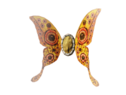 Щит лунной бабочки