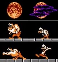 DW NES - Wolfduck