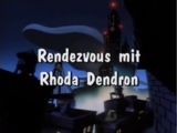 Rendezvous mit Rhoda Dendron