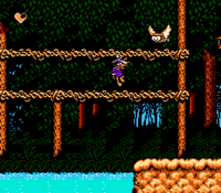 Darkwing Duck (NES) - Wald