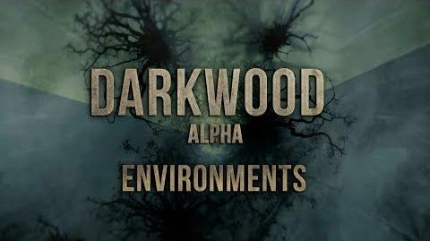 Darkwood alpha environments