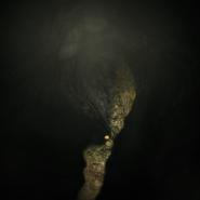 Swamp village cellar - pulsating roots