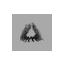 Icon bonfire