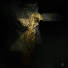 Swamp village cellar