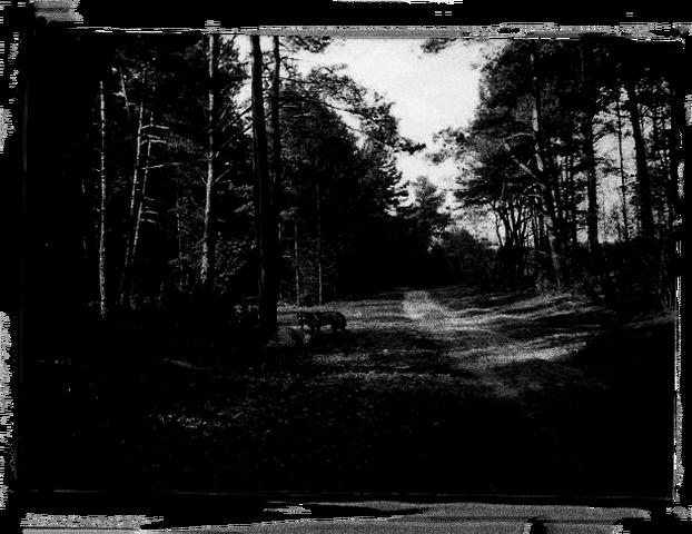 File:Hunter photo 01.png