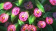 GreenhouseFlowers1