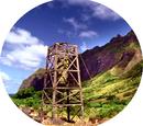 Lostpedia Wiki: hoofdpagina