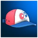Darwin Baseball Team