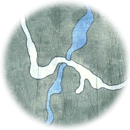 TLC Map Darkwood1