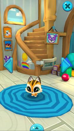Pet menu house