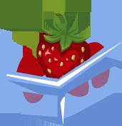 Icn strawberry2