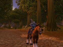 Borodon - Zu Pferd
