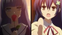 Miku challenged by Shiori