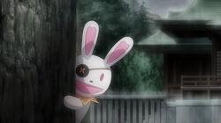 Rabbit behind tree