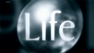 BBC Life title card