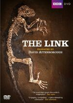 TheLink