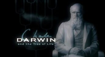 Tree-of-life-title-card