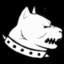 Bandit dog