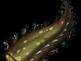Toothgrass