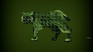 Old Rad lynx