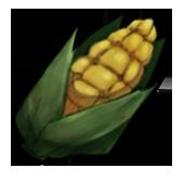 Кукуруза (старая)