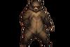Животные (иконка)
