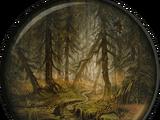 Радиоактивный лес