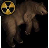 Туша рад. медведя