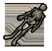 Скелет человека (старый)