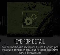 Eye for detail