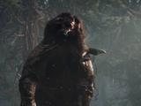 Rager Bear