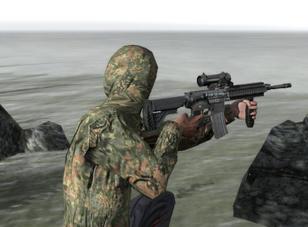 HK416 Elcan