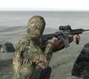 HK-416 Elcan