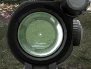 Hk416 CCO sights