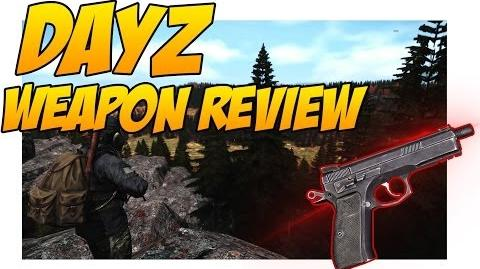 CR75 Weapon Review - DayZ Standalone