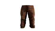 Leather Pants Brown Model (P-W)