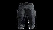 Grey Cargo Pants Model (P-W)