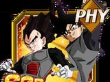 Duo of Justice Goku & Vegeta Black