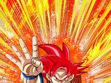 To a Godly World Super Saiyan God Goku