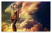 The hunger games catching fire katniss everdeen 2013-t2